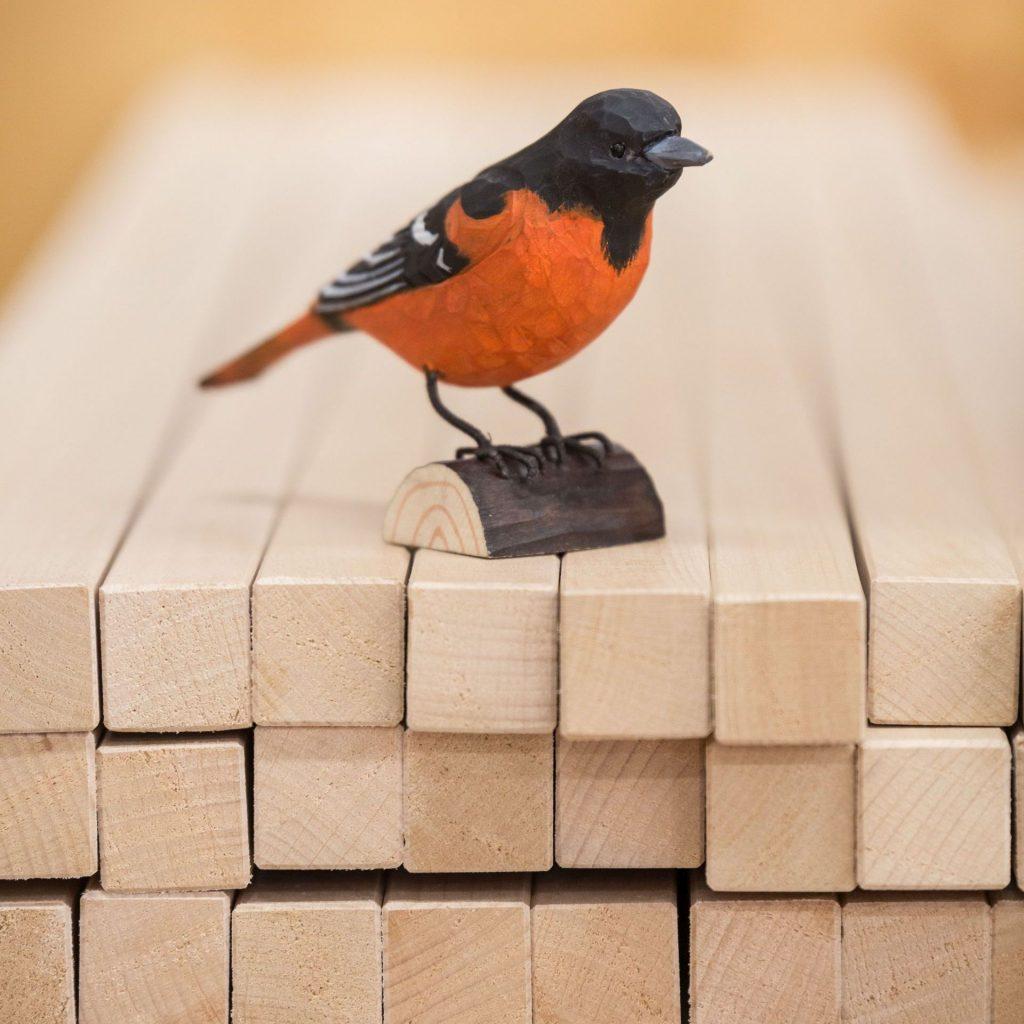 Hangbird sitzt auf Holzleisten