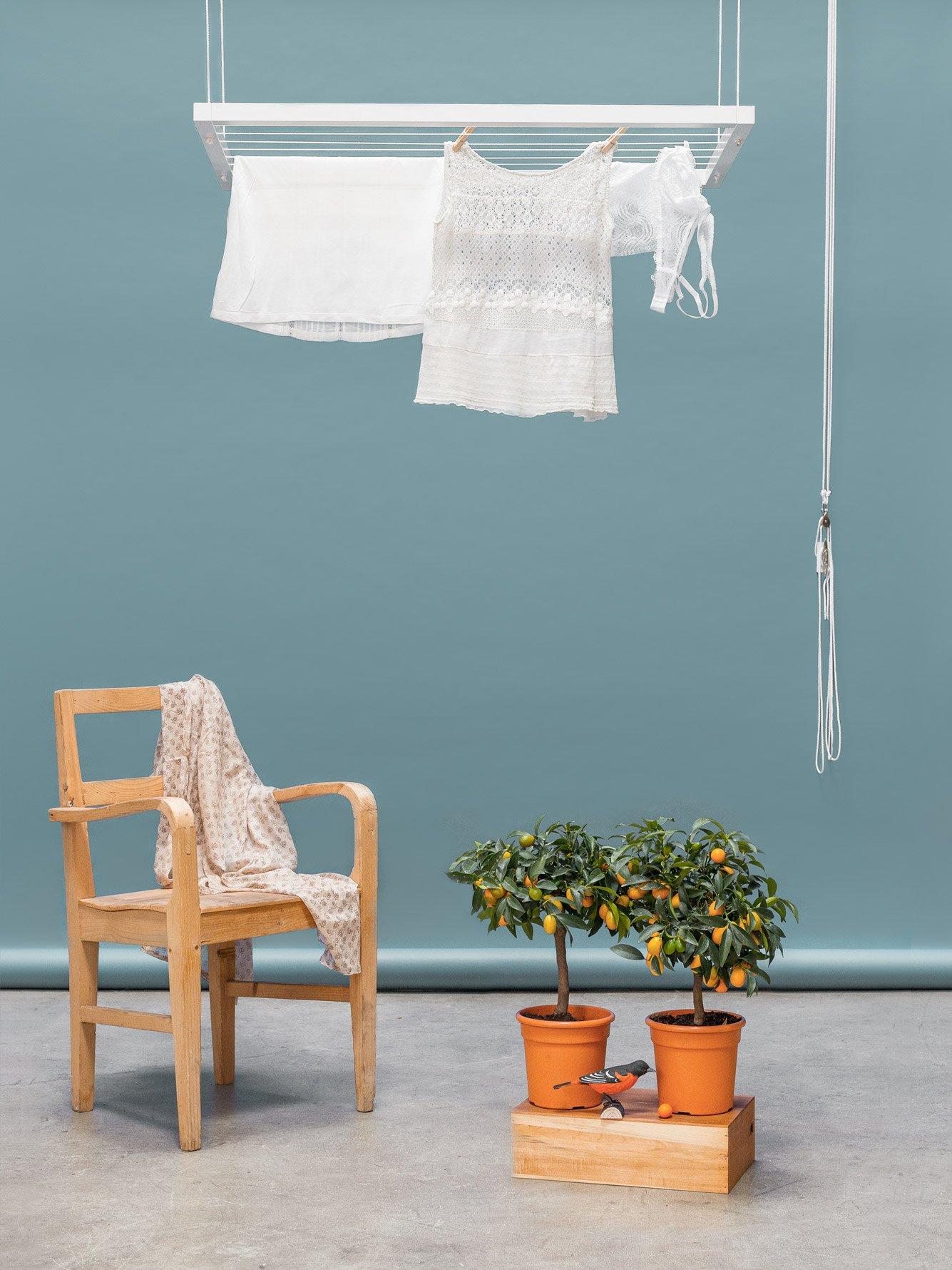 hangbird der w schest nder f rs leben. Black Bedroom Furniture Sets. Home Design Ideas